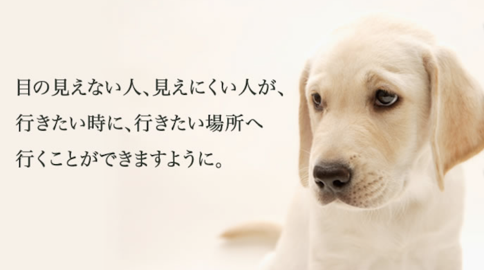 補助犬(盲導犬、介助犬、聴導犬)利用者の入店拒否はしないで