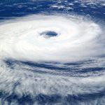 台風の後の塩害にも注意しましょう